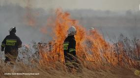 """""""Stop pożarom traw"""" - kampania Państwowej Straży Pożarnej i MSWiA"""