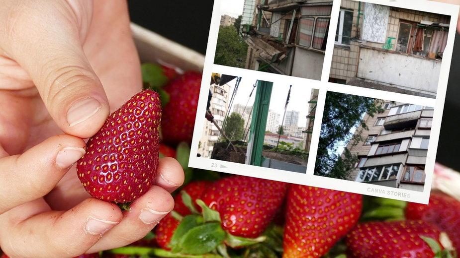 Ukraina: Wypełnił balkon toną ziemi, by uprawiać truskawki. Konstrukcja runęła