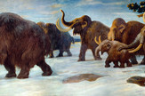 Rutavi mamuti