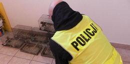 Policjanci dostali niepokojące zgłoszenie. Kiedy weszli do mieszkania 55-latka, osłupieli
