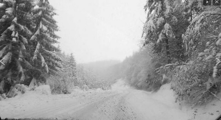 Manjaca sneg1