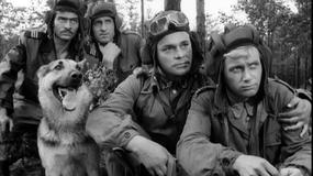 """""""Czterej pancerni i pies"""": 50 lat temu padł pierwszy klaps na planie serialu"""