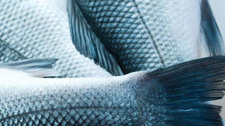 Ryby z przydomowych wędzarni turystyczną atrakcją