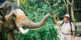 Poseł Szejnfeld i słoniowa trąba!