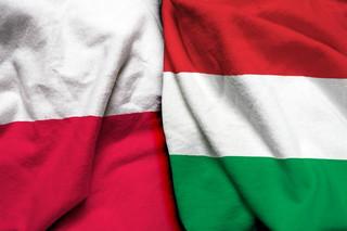Wspólna historia Polski i Węgier dostępna online