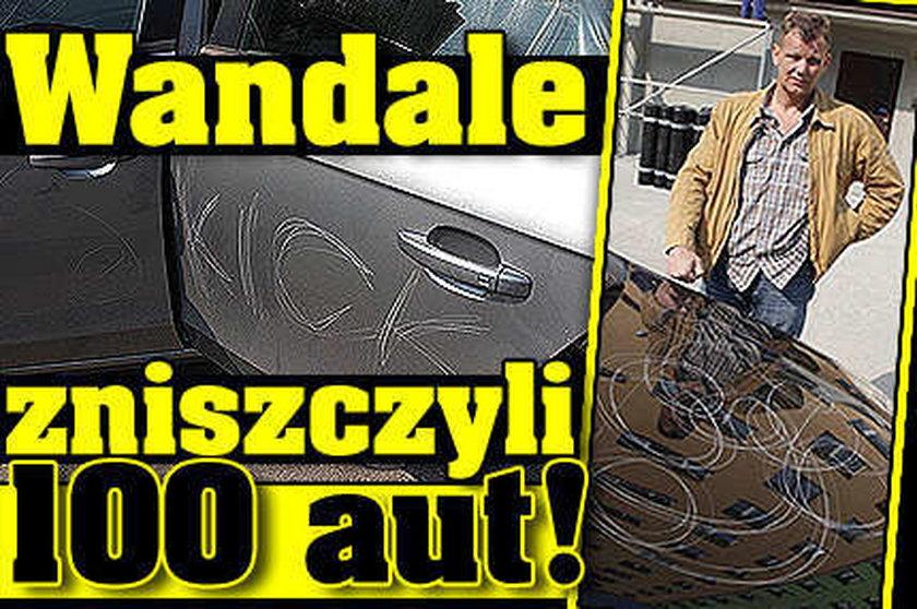 Wandale zniszczyli 100 aut!
