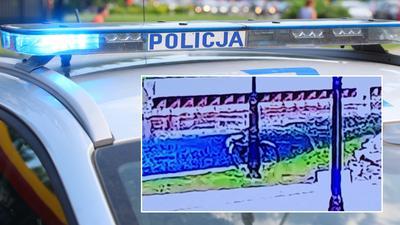 Zgłosił kradzież roweru, policjanci przejrzeli monitoring. Tego się nie spodziewali. NAGRANIE