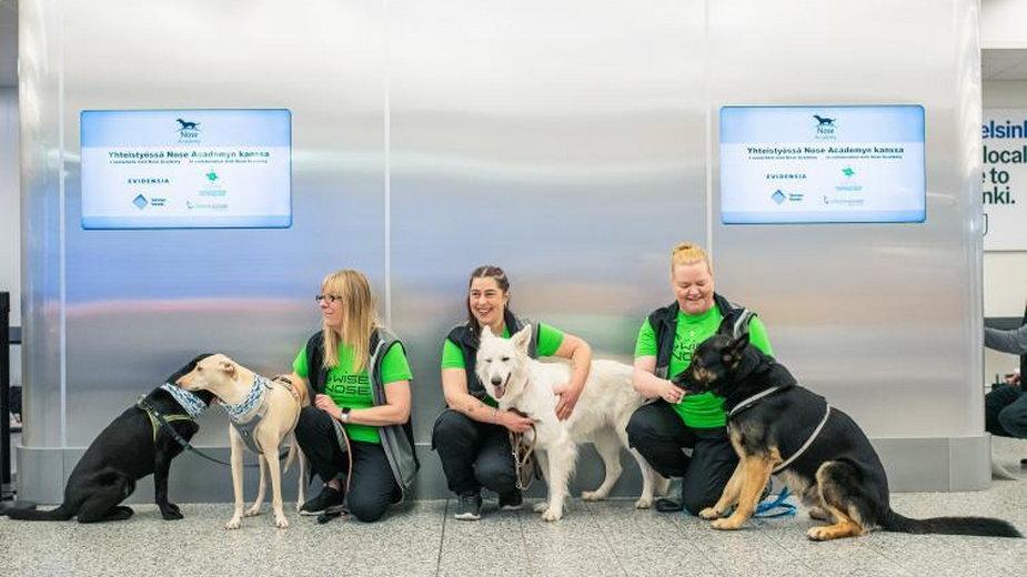 Psy na lotnisku w Helsinkach