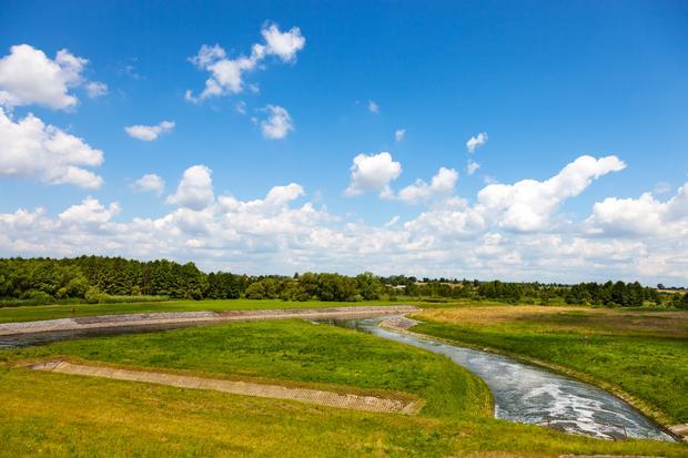 Rzeka Wieprz w Nieliszu