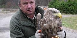 Bandyci chcieli otruć orły