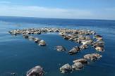 Meksiko kornjače foto epa Francisco Simerman