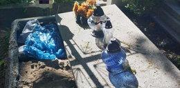 Narkotyki ukrył w nagrobku