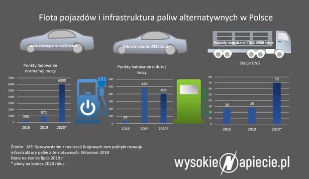 Flota pojazdów i infrastruktura paliw alternatywnych w Polsce