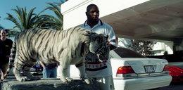 Tyson odgryzł kiedyś ucho, a jego tygrys rękę. Bokser pozbył się swojego pupila