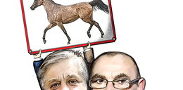 Zbijają fortunę na aukcjach koni. Ile na tym zarabiają?