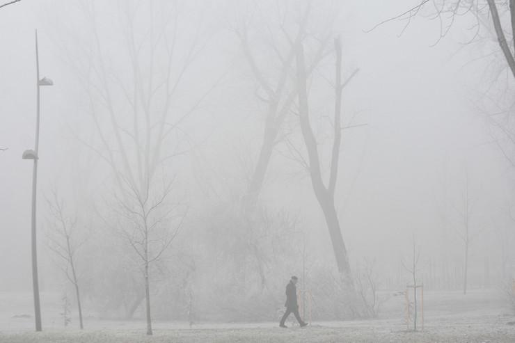 Novi Sad1847 mraz i magla u gradu foto Nenad Mihajlovic
