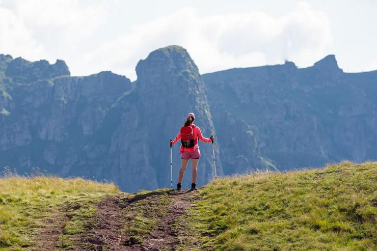 Stara planina, Planinarenje, vrh Midžor , divlji konji