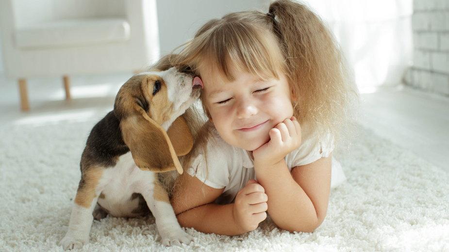 Pies może stać się najlepszym przyjacielem dziecka - nuzza11/stock.adobe.com
