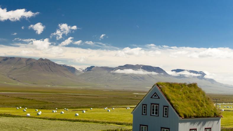 Stara farma z zarośniętym trawą dachem. Takie poszycie to dość powszechny widok na tej chłodne wyspie
