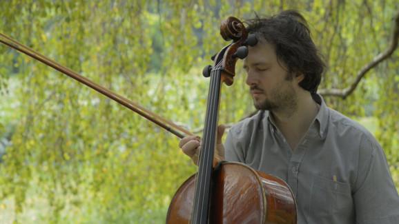 Desna strana violončela