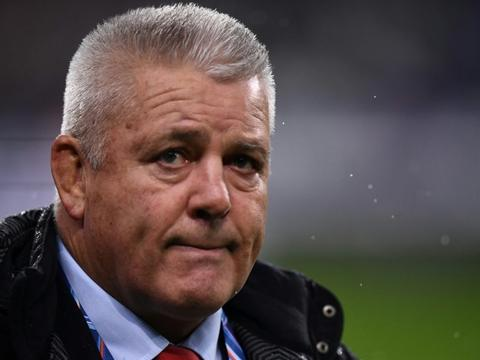 Gatland named Lions coach for 2021 South Africa tour