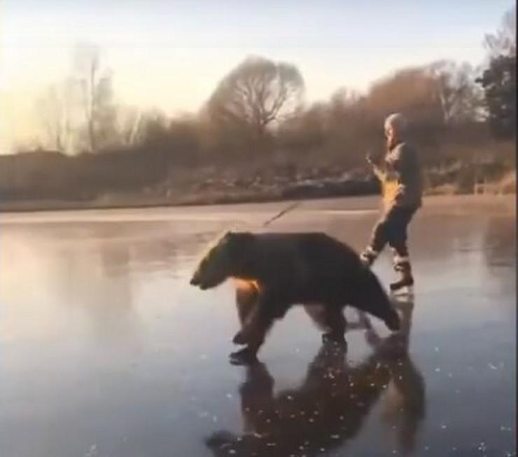 medved klizanje