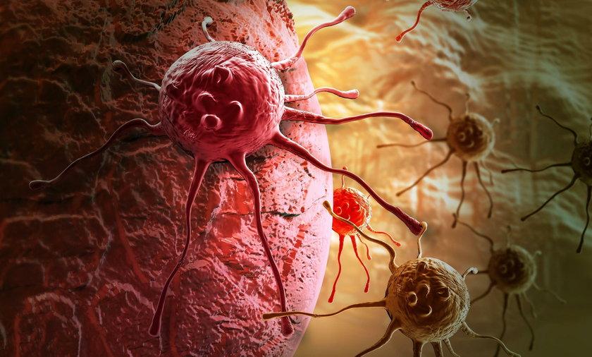 Największe szanse na wyleczenie mają nowotwory we wczesnym stadium rozwoju, ale leczeniu poddają się także te zaawansowane