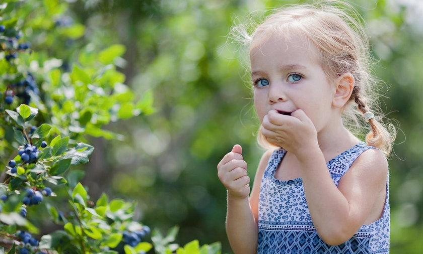 Jedzenie brudnymi rękami może zaszkodzić jamie ustnej