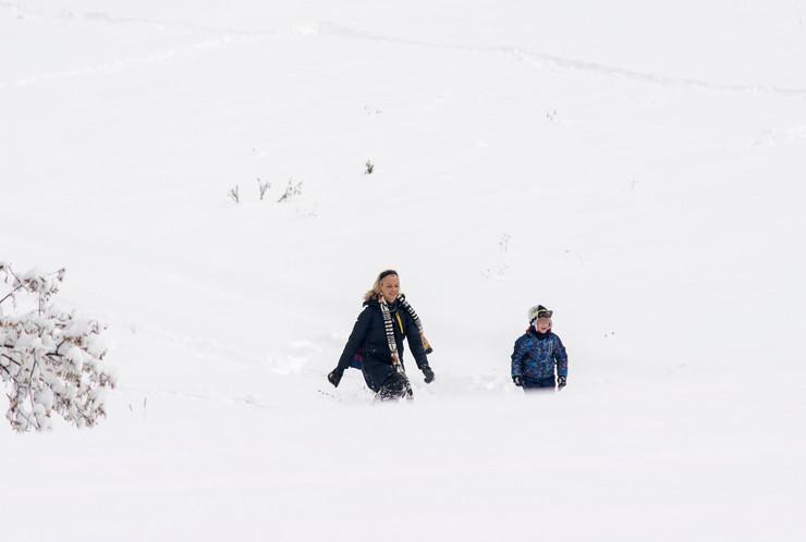 Novi Sad sneg zima na fruskoj gori BLUROVANO foto Nenad Mihajlovic