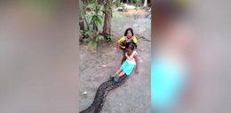 Przerażające nagranie. Dzieci bawią się z pytonem