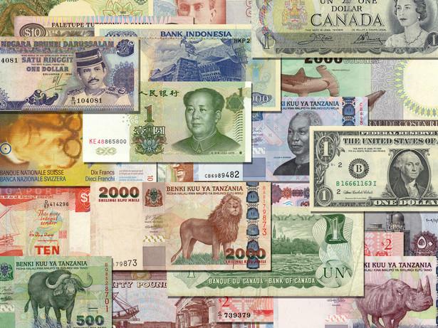 Kuczową kwestią jest identyfikacja potencjalnych zagrożeń dla najważniejszych walut, które czekają nas w 2013 r.