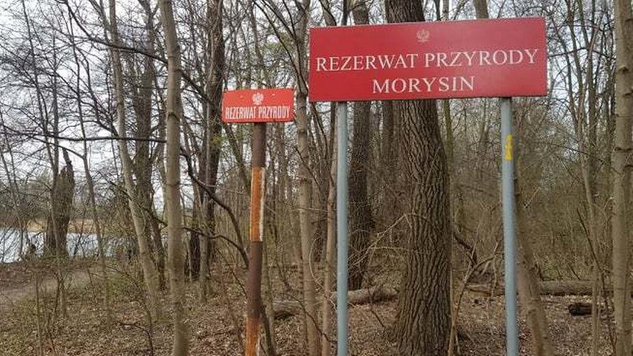 Według nowego projektu gazociąg miałby przebiegać przez rezerwat Morysin