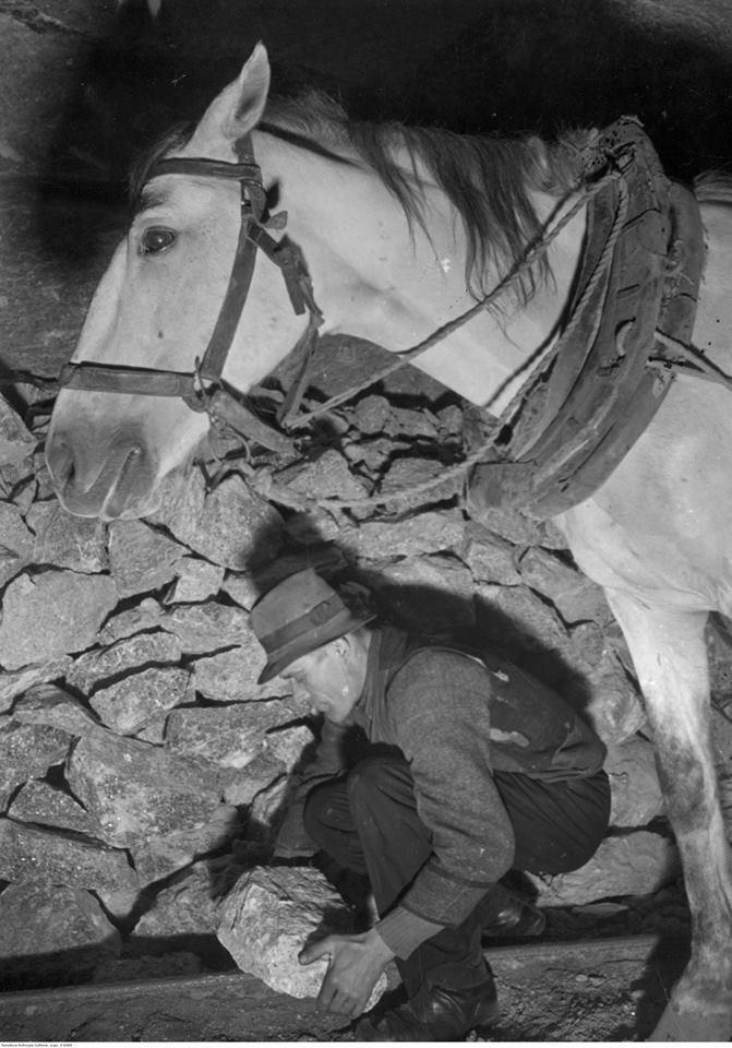 Załadunek brył soli na wózki z zaprzęgiem konnym w kopalni, około 1939-1944 roku