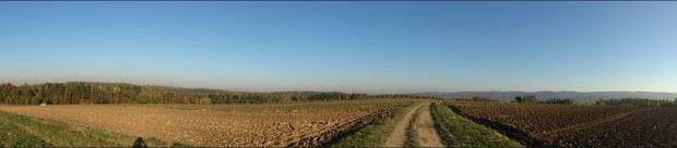 Sony Xperia T - panorama