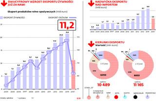 Własna marka na wagę eksportu: Sprzedaż polskiej żywności za granicę ciągle nabiera tempa
