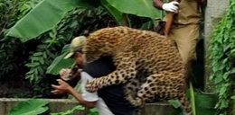 """Tak """"koteczek"""" zaatakował strażnika. Foto"""