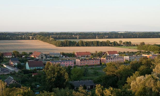 Widok z wieży w parku w Turwi