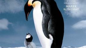 Marsz pingwinów - plakaty