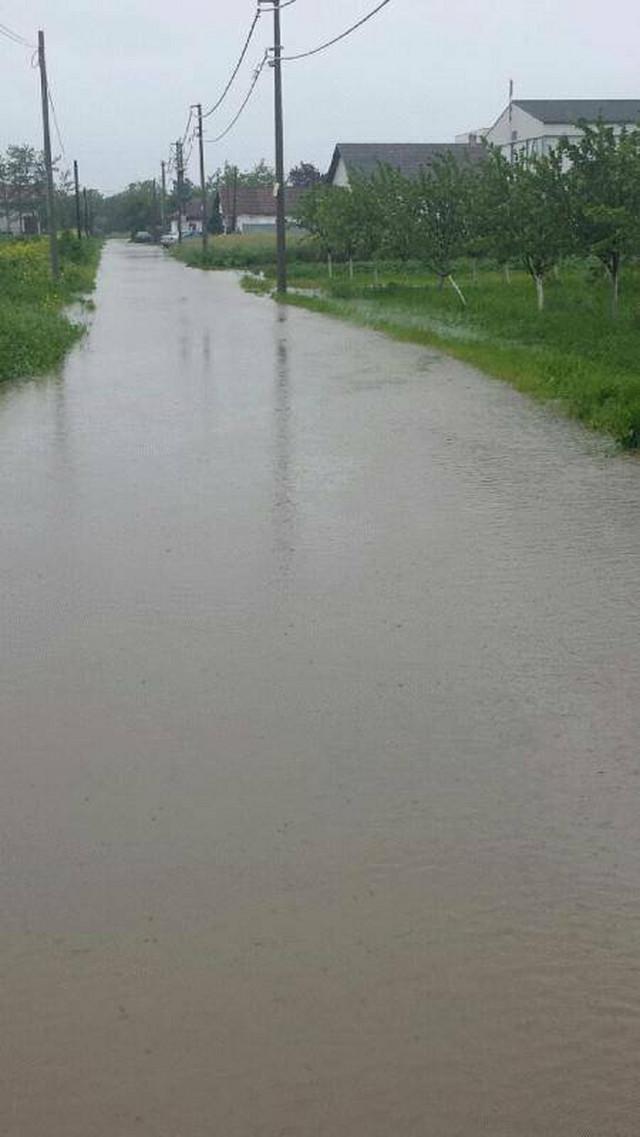 Poplavljena Ulica Mike Antića