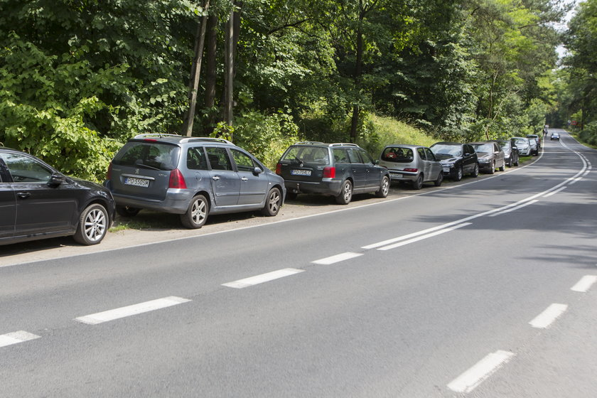 Gdzie zaparkować na Strzeszynku?