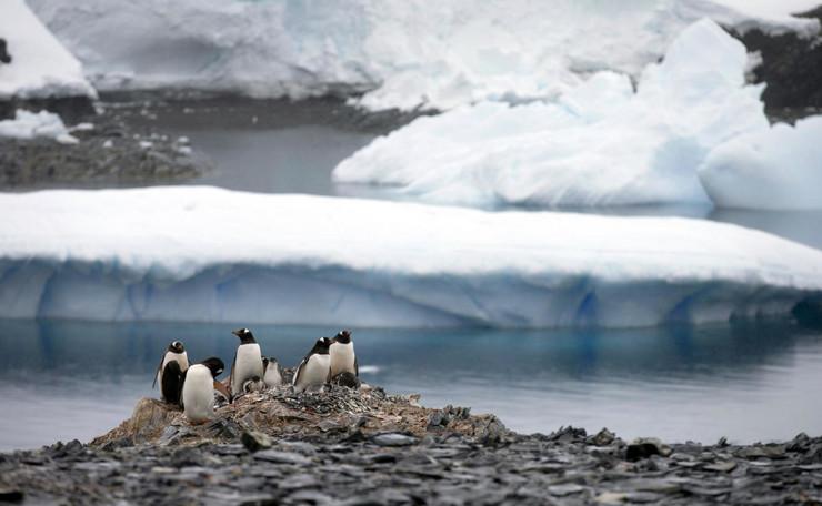 Antarctica 3 Tanjug AP