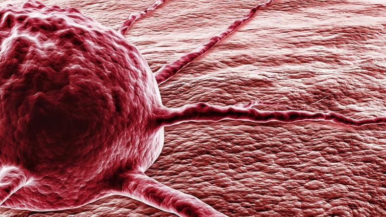 Aby uchronić się przed rakiem, trzeba unikać nałogów i mieć zdrową dietę