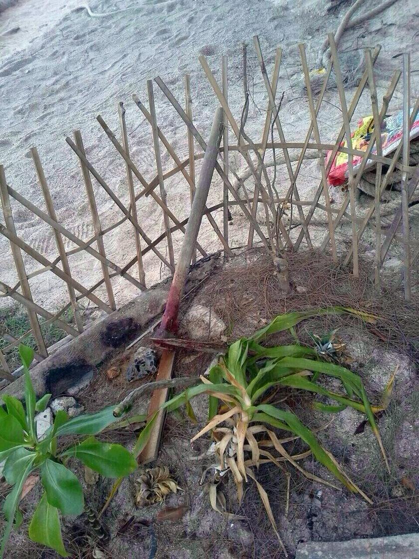 Motyka - narzędzie zbrodni
