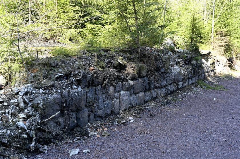Co CIA szukało w lesie pod Wałbrzychem?