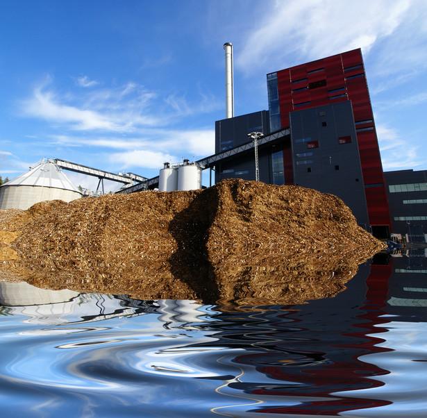 Elektrownia biomasowa