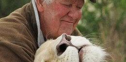 Przez lata opiekował się lwami. Zagryzły go na oczach żony
