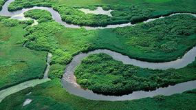Światowy Dzień Mokradeł - terenów istotnych w zrównoważonym rozwoju