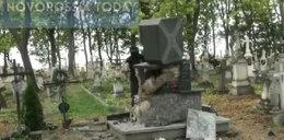 Atak na cmentarzu w Wierzbicy