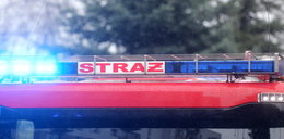 Pożar kamienicy w Piotrkowie. Ewakuowano 16 osób
