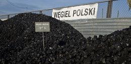Nowa kopalnia w Polsce. A miała tam być atomówka